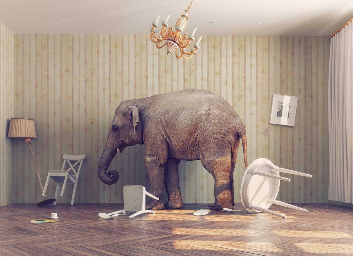Home builder culture disruption